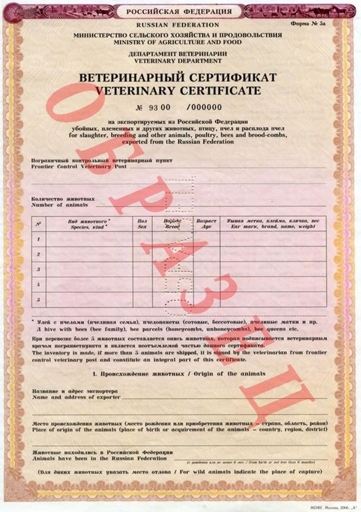 оформление ветеринарного сертификата ес в спб БОЛЬШОЕ желание